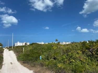 Fotografía 5 de Waves Beach Properties